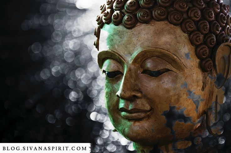 man buddhist personals Dating rules according to buddha here are the rules to dating according to buddha shutterstockcom always leave on good terms when a couple.