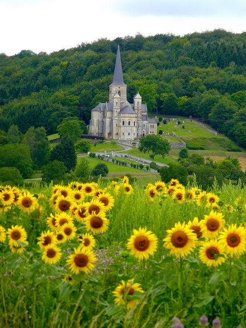 fields of sunflowers, Eglise Notre Dame, Mont-Devant-Sassey, Meuse, Lorraine, France.  Photo: lreed76, via Flickr