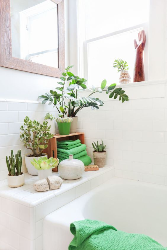 use green plants for zen spa style bathroom