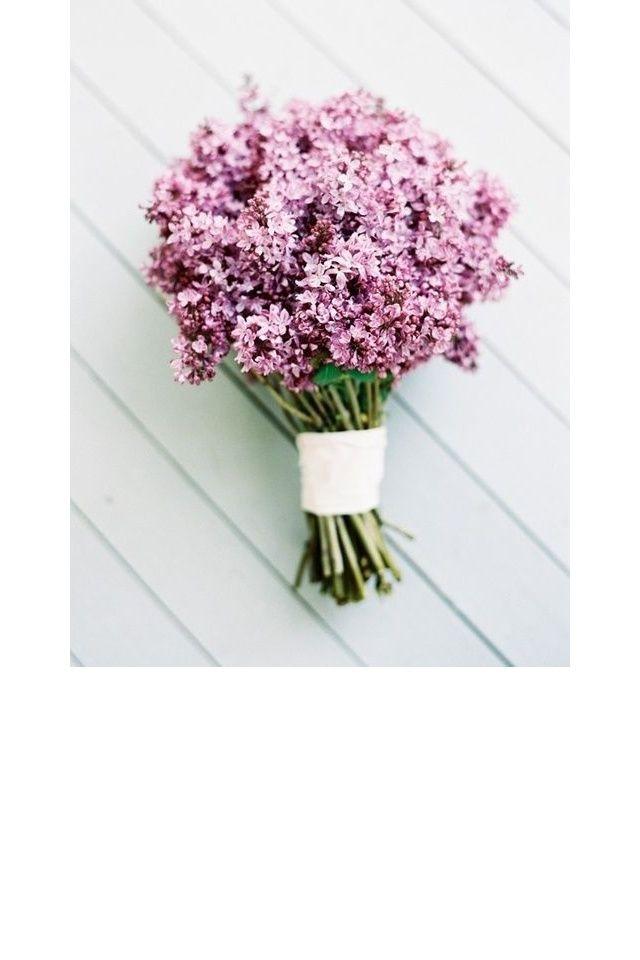 les 25 meilleures idées de la catégorie bouquet de lilas en