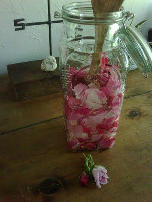 hacer aceite de rosas en casa