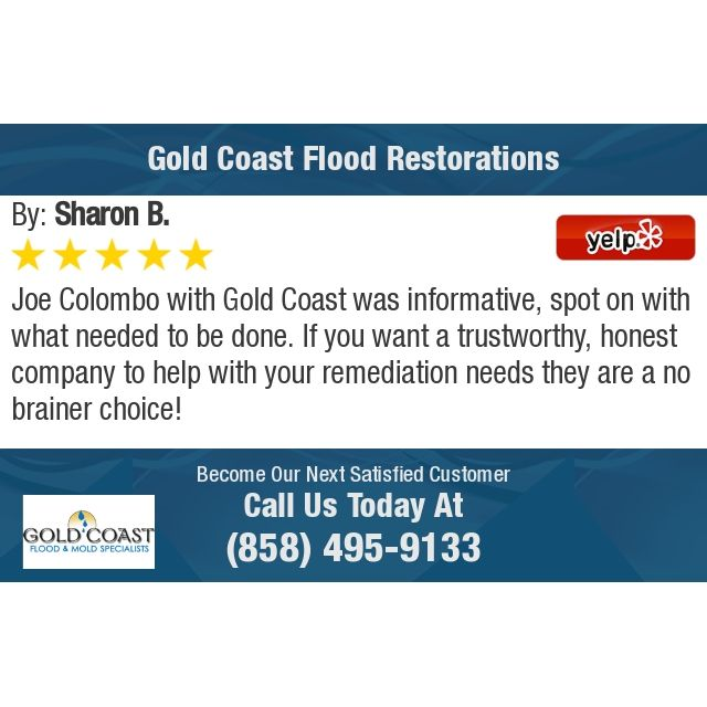 Joe Colombo With Gold Coast Was Informative Spot On With What Needed To Be Done If You Flood Restoration Flood Gold Coast