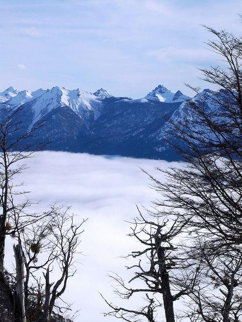 National Park Nahuel Huappi #Travel #gear #fitness #powderquest #style #ski #snowboard #wonders #chile #argentina