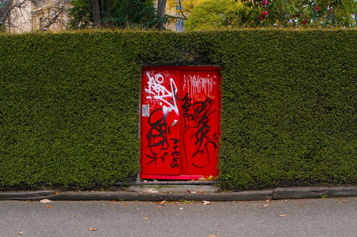 two photos of a hedge.