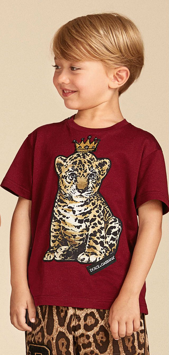 e8a125c2b6a1 Love! Dolce Gabbana Junior Boys King Tiger T-Shirt   Shorts Summer ...