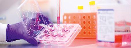 Gran desarrollo científico para tus productos Oriflame, sin petroquímicos