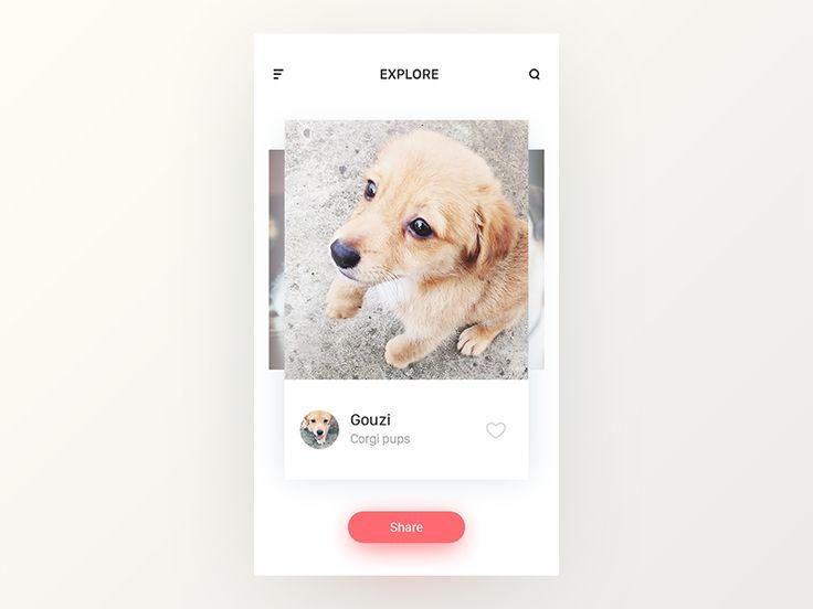 Pets App by ZengBin