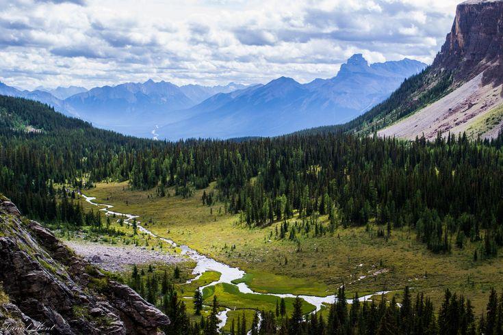 View from Rockbound Lake Banff Ab. By Daniel Kent[16001067] #reddit