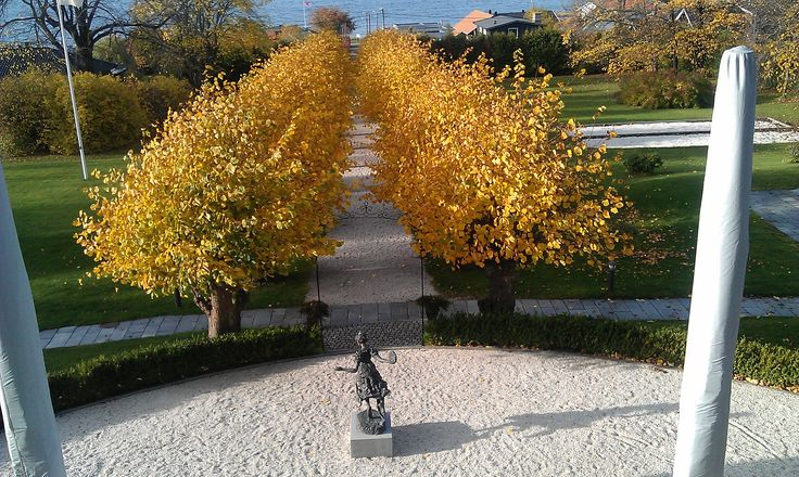 Our linden tree avenue - fall. Outdoor wedding, wedding ceremony, wedding ideas