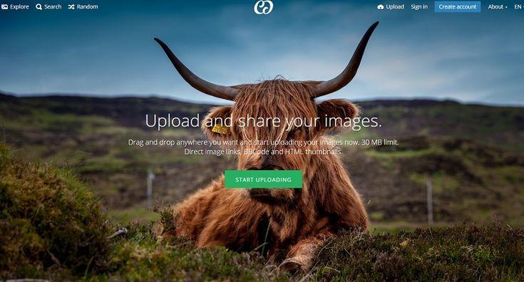Los 30 mejores bancos de imágenes gratis
