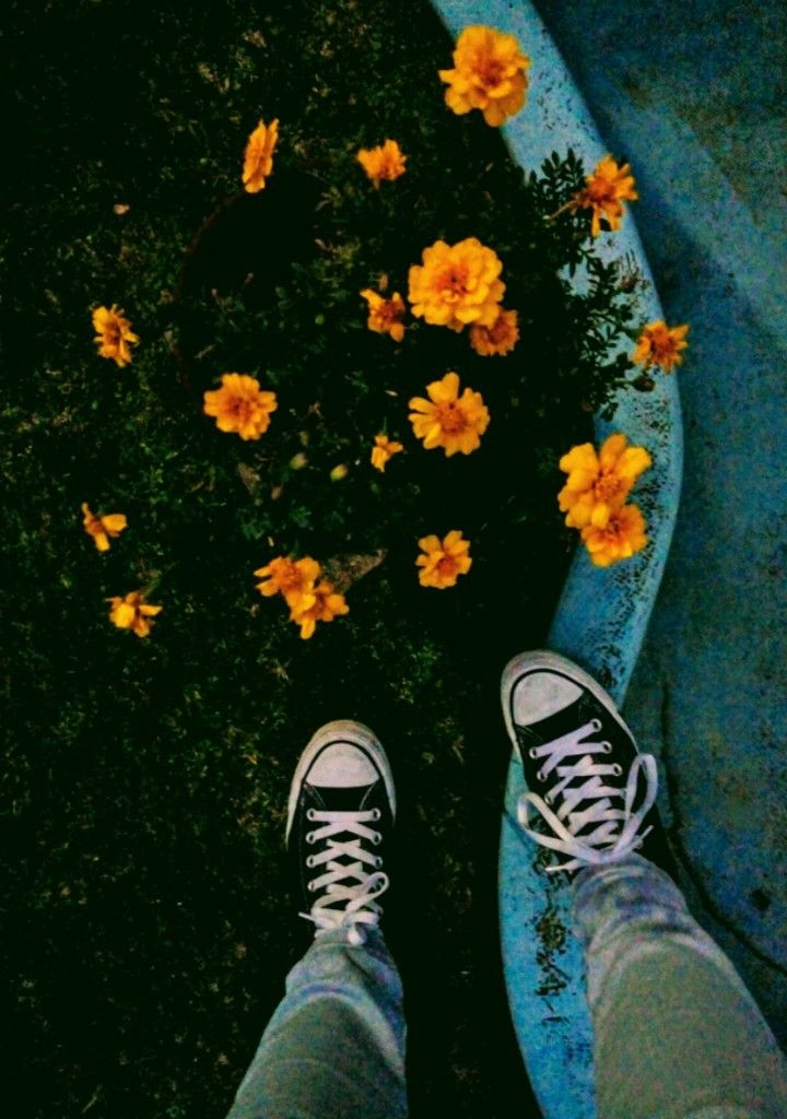 aesthetic tumblr infp aesthetic aesthetic photography ...
