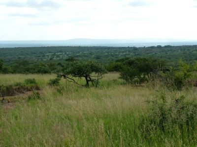 Welgevonden 6m, 500ha.  This 500 Hectare premium undeveloped land located within the conservancy area offers a matchless passport to the Welgevonden Game Reserve. Easy accessible by road and air. Situated in a malaria free area. Experience the best of Mother Nature in the company of the Big 5 and other endemic plains game. The ideal investement for the visionary investor who wishes to develop this land and become part of the natural unspoilt Waterberg Biosphere.