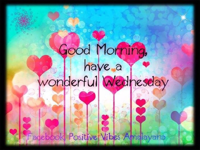 Good Morning!  Have a wonderful Wednesday.