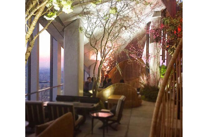 東京で最も高い、地上約250mのルーフトップバー&テラスでお花見を楽しむ! アンダーズ 東京が「お花見ガーデン」を開催。 ( page 2 ) | VOGUE