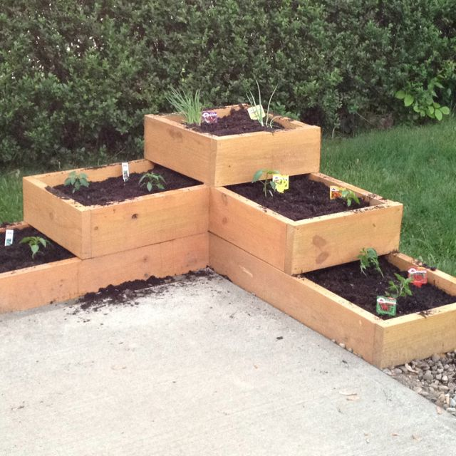 patio garden boxes grow small vegetables and fresh herbs