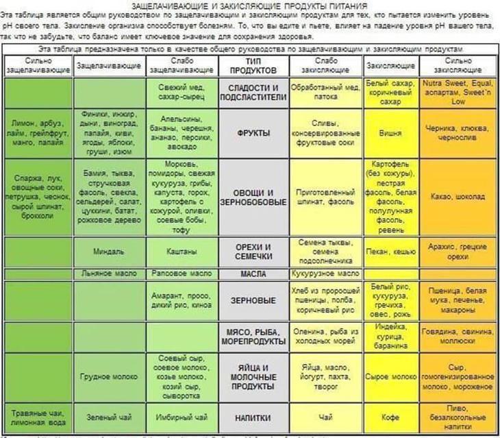 Основы регуляции организма