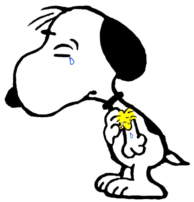 Snoopy & Woodstock Overcome with grief