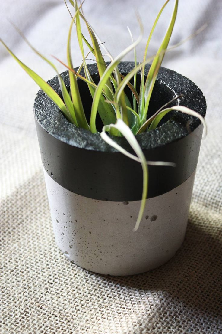 Sleek Cylindrical Concrete Planter