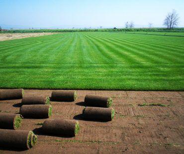 Bahçıvan Peyzajın uzman kadrosuyla peyzaj projeleriniz Uygulanır, Stres bahçeleri, Sert Peyzaj, Periyodik Bakım, Bitkilendirme, Aydınlatma sistemleri, Rulo Çim.