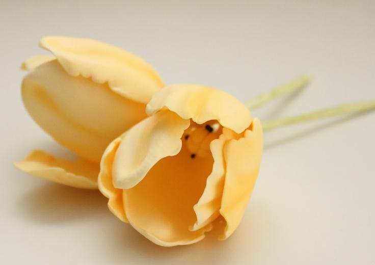 Tulipanes de azúcar