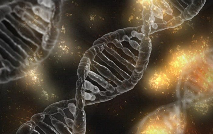 The US advanced military research body – DARPA – announced that it will invest tens of millions of dollars into genetic extinction research. While the official aim of this research is said to be fighting harmful insects, there are significantly darker speculations about the possible use of such a tool.