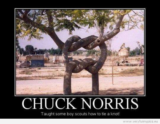 Chuck Norris Jokes | The 50 Best Chuck Norris Facts & Memes (Page 3) hahaha.