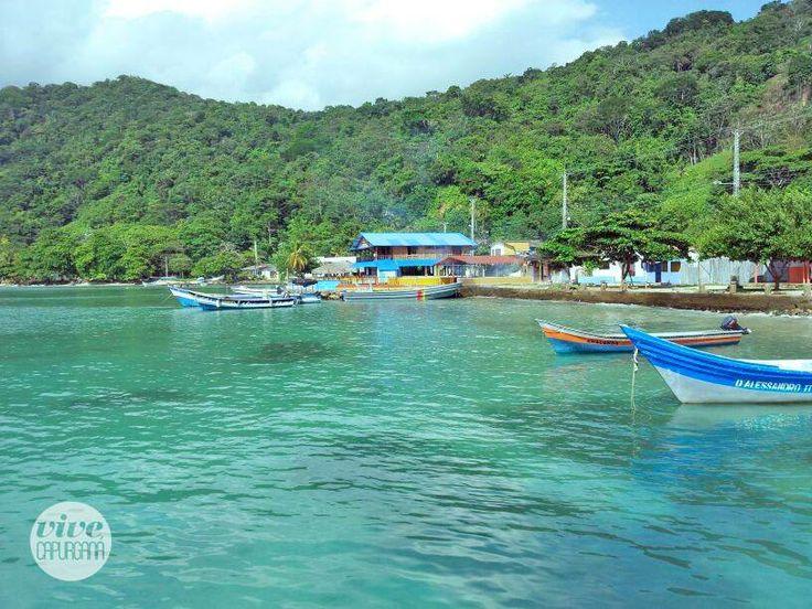 Exuberante vegetación, arena blanca y un mar cristalino caracterizan a la Bahía de Sapzurro como un fascinante y paradisíaco lugar del Darién en Capurganá.