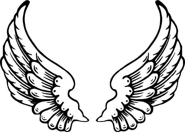 Kanatlar, Tüyleri, Kuş Kanatları, Angel Wings, Uçuş