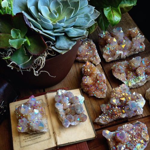 weloveminerals:Crystals and succulents are my favorite by ...