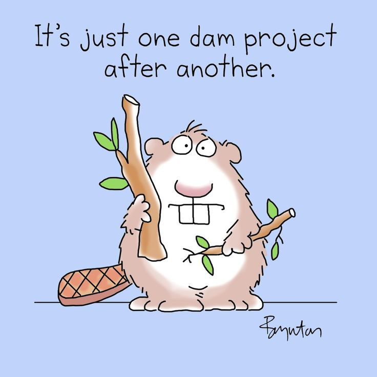 Beaver Pun it's just one dam project after another Sandra Boynton damn busy