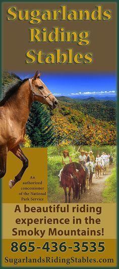 Coupons for horseback riding in gatlinburg
