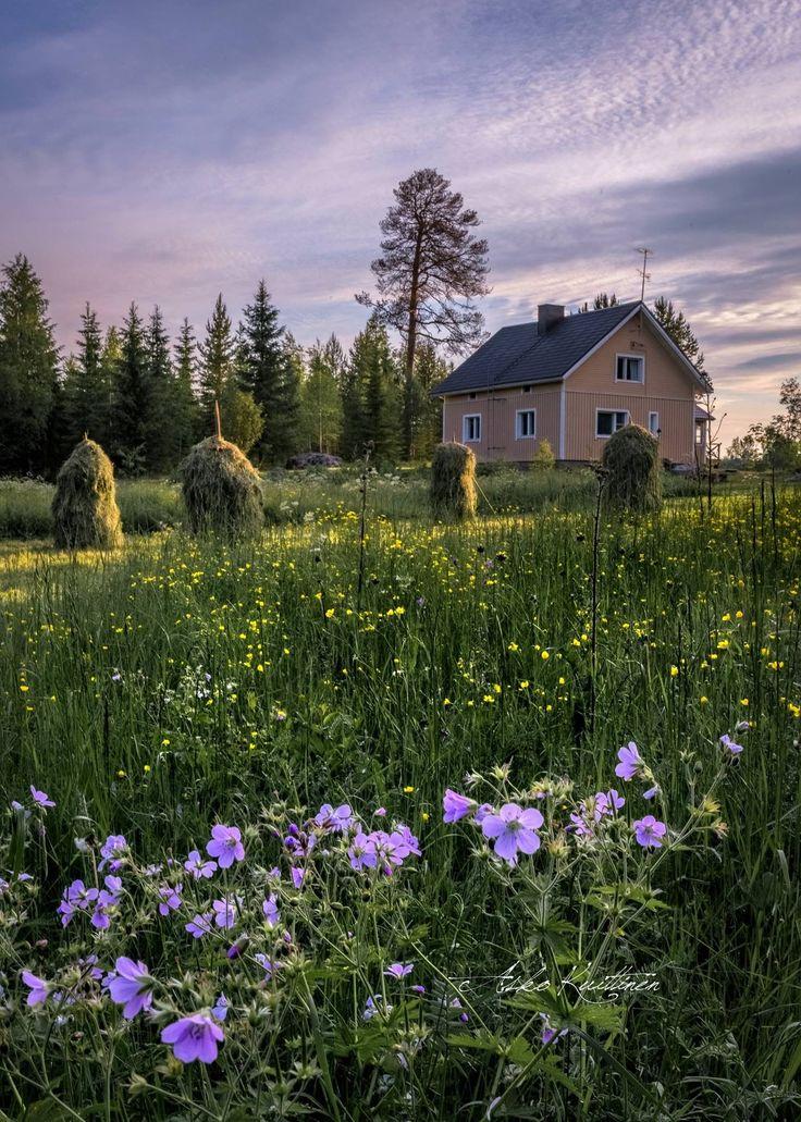 July in Finland by Asko Kuittinen