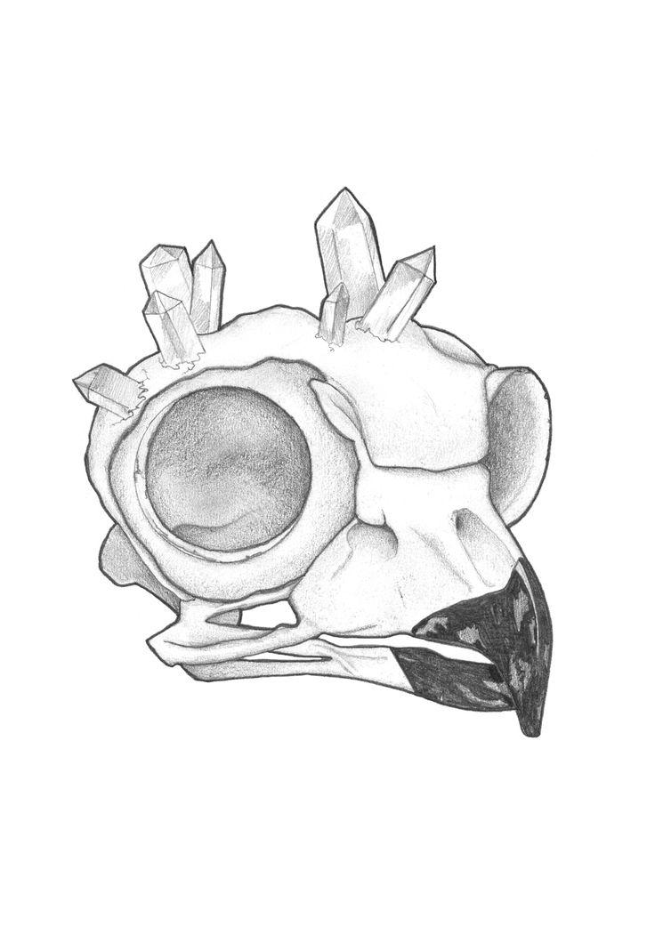'Owl Skull'