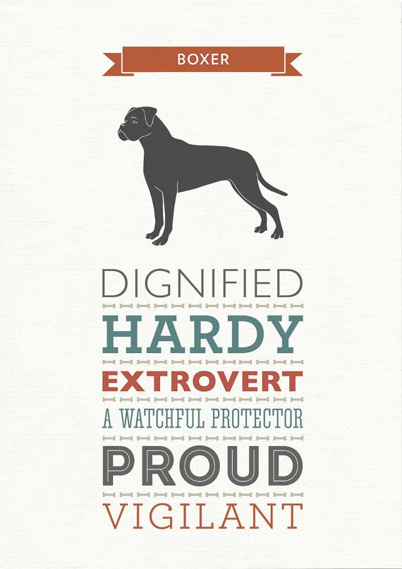 Boxer Dog Breed Traits Print Great Gift for by WellBredDesign