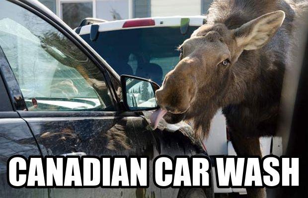 Auto Pride Car Wash: 1000+ Images About Car Wash Memes On Pinterest