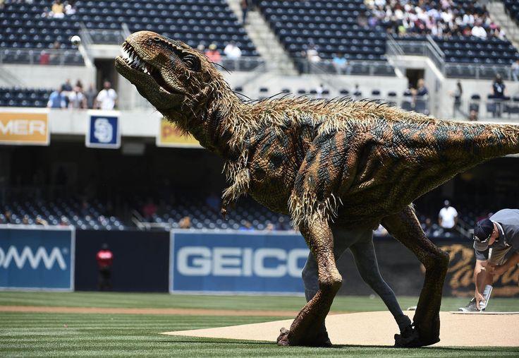 Tyrannosaurus Rex Throws First Pitch at Petco Park - NBC News