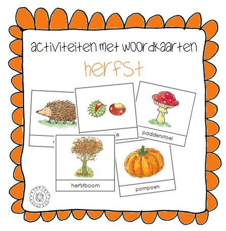 Woordkaarten zijn een handig hulpmiddel tijdens thema's. Met behulp van de woordkaarten wordt onder andere de woordenschat van de ...