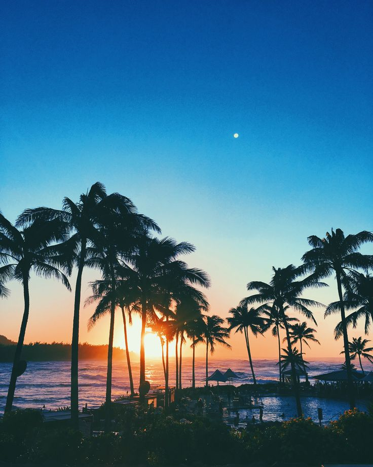 GypsyLovinLight: Turtle bay Resort, Northshore, hawaii