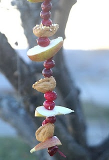Winter bird feast tree decorations with apple, cranberry, walnuts, peanut butter, and birdseed.