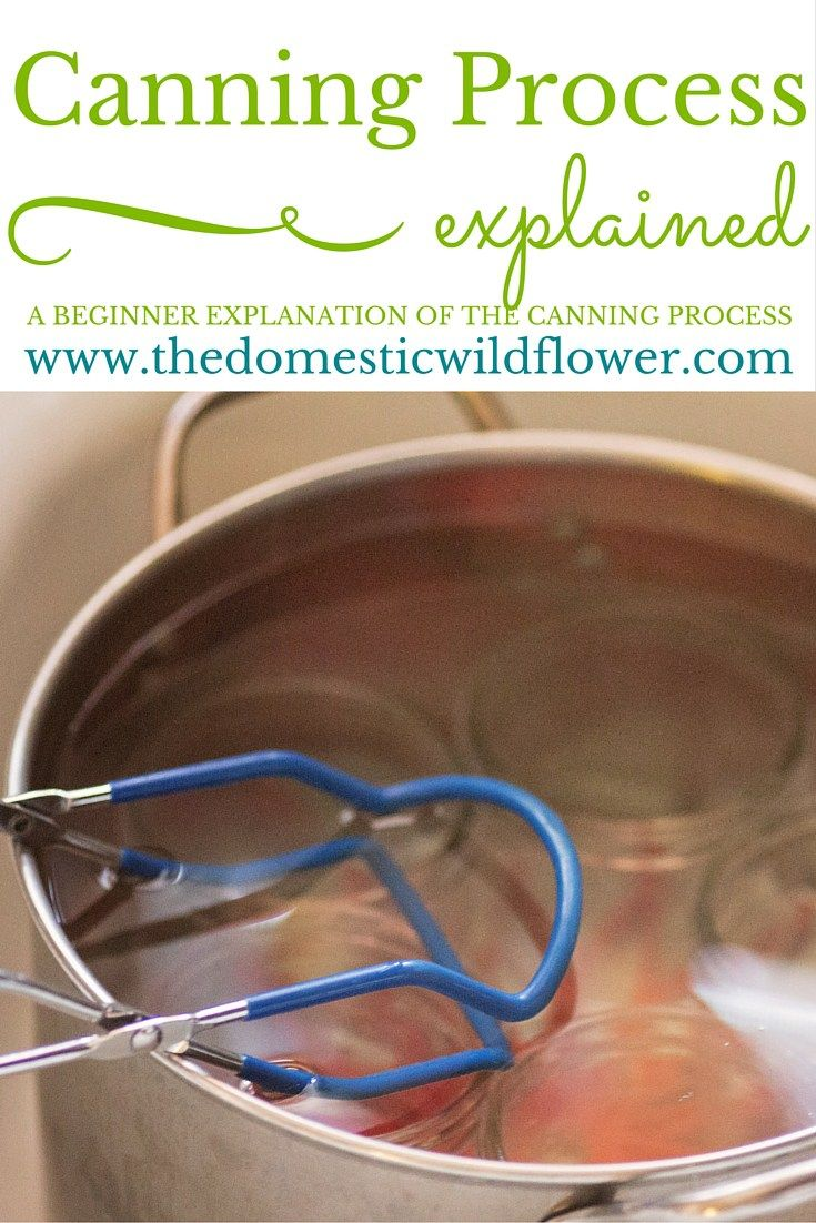 The Canning Process Explained | The Domestic Wildflower click to read this helpful post for beginners wondering about the canning process. The post even has a helpful printable diagram of the stove when you are canning so you know what pot should be doing what! Click to read it now!