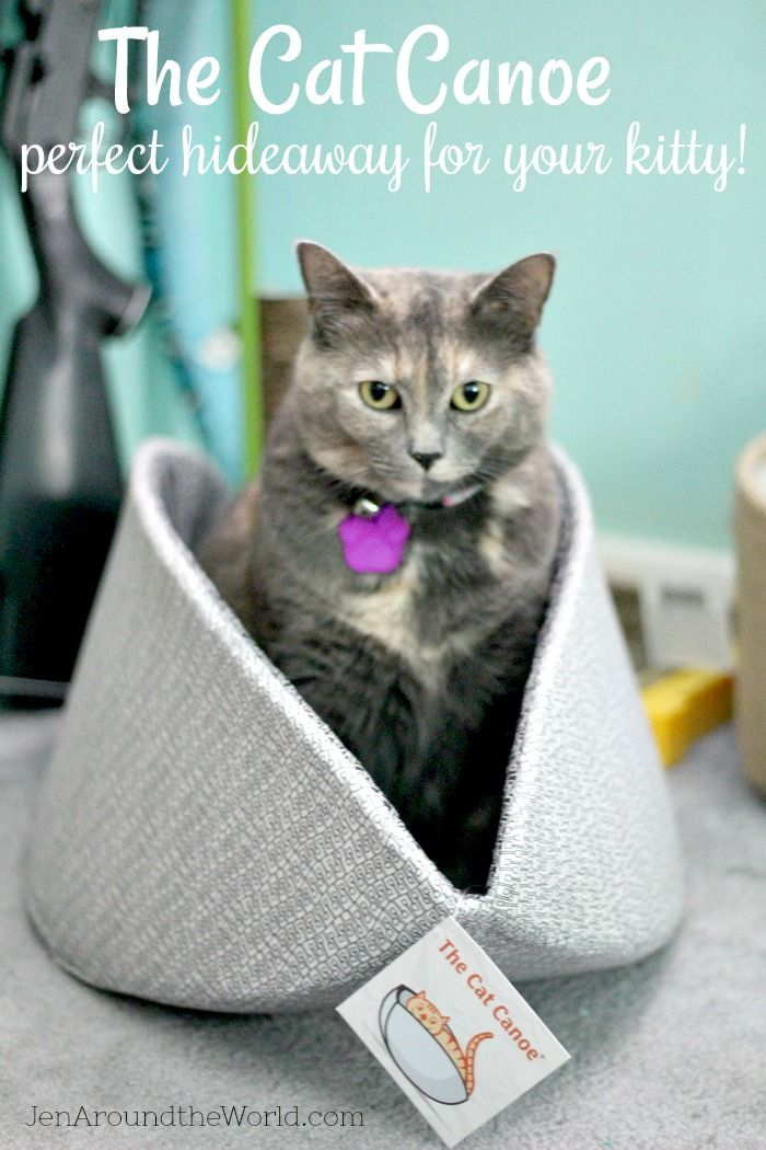 The Cat Canoe pet bed is the perfect nestling spot for your kitty! This modern cat bed is made in USA and washable.