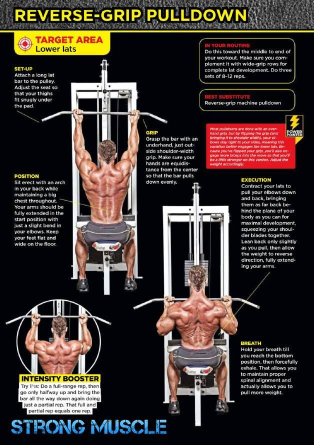 """reverse-grip #pulldown #back -- """"ENTER TO YOUR COMPLETE STEP-BY-STEP GUIDE TO LEAN, SEXY ABS - free report""""  http://9nl.me/b1b0"""