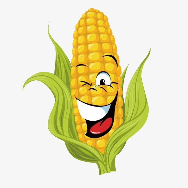Cartoon Corn Cartoon Vector Corn Vector Cartoon Png Transparent Clipart Image And Psd File For Free Download Cartoons Vector Crown Drawing Cartoons Png