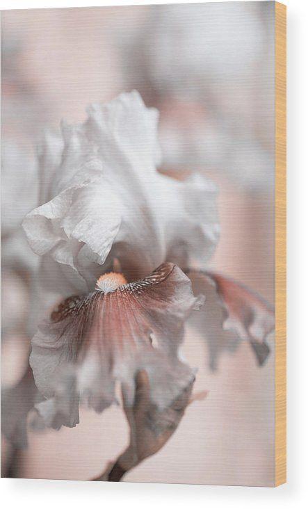 Jenny Rainbow Fine Art Photography Wood Print featuring the photograph Graceful Dream by Jenny Rainbow