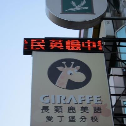 Giraf-Mania! :)