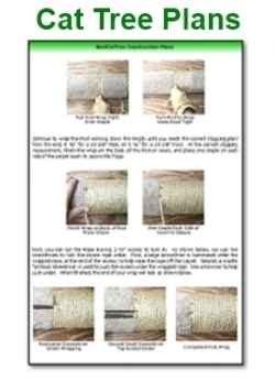 Cat Scratching Post Plans Download