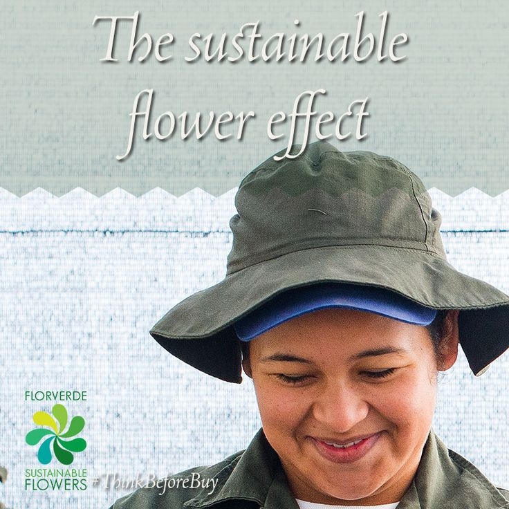 What effect makes a sustainable flower smell on you?
