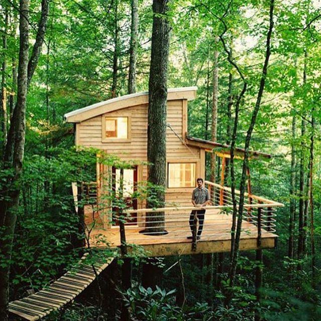 """Hell yeah! Hit up @canopycrew to rent this amazing tree house in the Red River Gorge! Photo via @cabinlove #KentuckyKicksAss #Kentucky #ExploreKentucky…"""
