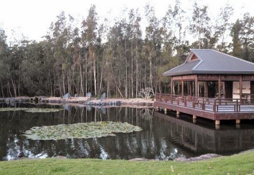 Japanese garden Coffs Harbour Botanical Gardens