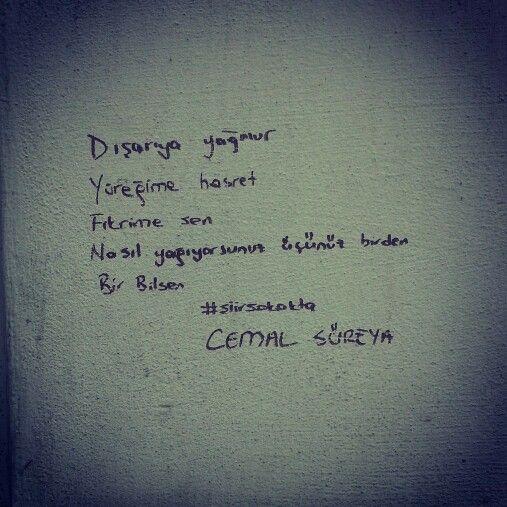 şairlerin Kısa şiirleri